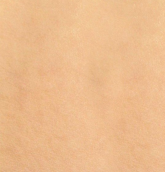 Tilable Photo of Skin